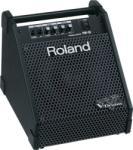Roland PM-10 Monitor de scena