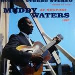 Muddy Waters At Newport 1960 (180g)