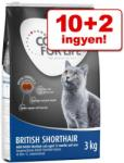 Concept for Life British Shorthair 12kg