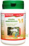 Favisan Coada Soricelului - 40 comprimate