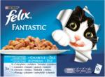 FELIX Fantastic Selection Fish & Vegetables 12x100g