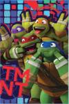 Tini Nindzsa Teknőcök Tini Nindzsa Teknőcök, Ninja Turtles polár takaró 100*150cm