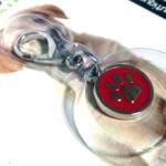 Bol-Dog. hu - Egyedi kutyás ajándéktárgyak Tappancsos kutyaékszer - bordó