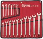 Genius Tools Csillag-villáskulcs készlet 17db 6-22mm (PR-017M)