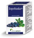 Ramcopharm, България Боровинка+ Ramcopharm 30 капсули (3800205361695)