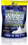 Olimp Sport Nutrition 100% Natural Whey Protein Concentrate - 700g