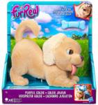 Hasbro FurReal Friends - interaktív Goldie kutyus (B9064)