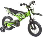 Kawasaki Moto 12