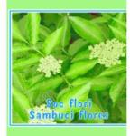 CYANI Ceai din flori de soc 50gr CYANI