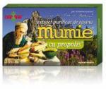 DAMAR Extract de rasina mumie cu propolis-tablete 30tbl DAMAR