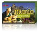 DAMAR Extract de rasina mumie cu propolis-tablete 60tbl DAMAR