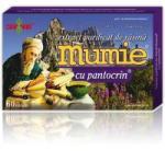DAMAR Extract de rasina mumie cu pantocrin-tablete 60tbl DAMAR