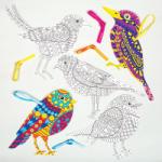 Baker Ross Kreatív madaras színező készlet (AC791)
