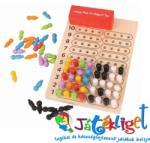 Bigjigs Toys Mesterlogika - kódfejtő játék- Bigjigs