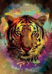 Art Puzzle 4171 - Tigris, Eren Malcok - 500 db-os puzzle