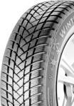 GT Radial WinterPro 2 205/55 R16 91T