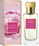 Bottega Verde Peonia Splendida EDT 50ml Parfum
