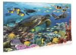 Riviera Games Teknős 3D puzzle 100 db-os P3D05