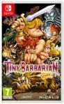 Nicalis Tiny Barbarian DX (Switch) Játékprogram