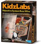 4M Toys Emésztőrendszer labirintus ismeretterjesztő ügyességi játék