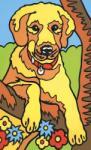 Mammut Pictura pe Numere Catel Carte de colorat