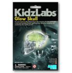4M Glow Skull világító koponya készlet