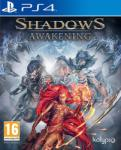 Kalypso Shadows Awakening (PS4) Játékprogram