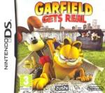 DSI Games Garfield: Gets Real (Nintendo DS) Software - jocuri