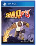 Wired Productions Shaq-Fu A Legend Reborn (PS4) Játékprogram