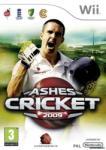 Codemasters Ashes Cricket 2009 (Wii) Játékprogram