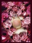 Les Parfums de Rosine Une Folie de Rose Extrait EDP 50ml Parfum