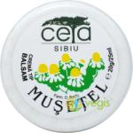 CETA SIBIU Unguent Musetel 20gr