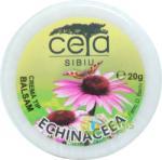 CETA SIBIU Unguent Echinacea 20g