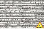 Piatnik Hangjegyek (1000)