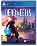 Merge Games Dead Cells (PS4) Játékprogram