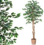 Tuin Műnövény PLANTASIA® Fikusz 190 cm - idilego
