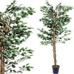 Tuin Műnövény fa TUIN 160 cm - fikusz - idilego