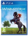 Eurovideo Medien Windstorm (PS4) Játékprogram