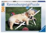 Ravensburger 14179 (500) - Golden Retriever Puzzle