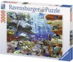 Ravensburger 17027 (3000) - Oceanic Wonders Puzzle