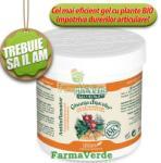 Life Care Bio Gel Antiinflamator Gheara Dracului si plante Bio Krauter 250 ml