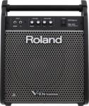 Roland PM-100 Monitor de scena