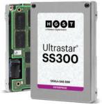Hitachi Ultrastar 2.5 1.6TB SAS HUSMM3216ASS200 0B34895