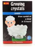 LAMPS Bárányos kristálynövesztő