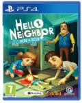 Gearbox Software Hello Neighbor Hide & Seek (PS4)