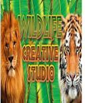 Alternative Software The Wildlife Creative Studio (PC) Jocuri PC
