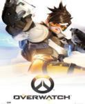 Blizzard Entertainment Overwatch (PC) Játékprogram
