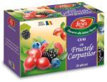 Fares Ceai cu fructele carpatilor 20 plicuri