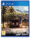 Headup Games Trüberbrook (PS4) Játékprogram