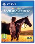 Eurovideo Medien Windstorm Ari's Arrival (PS4) Játékprogram